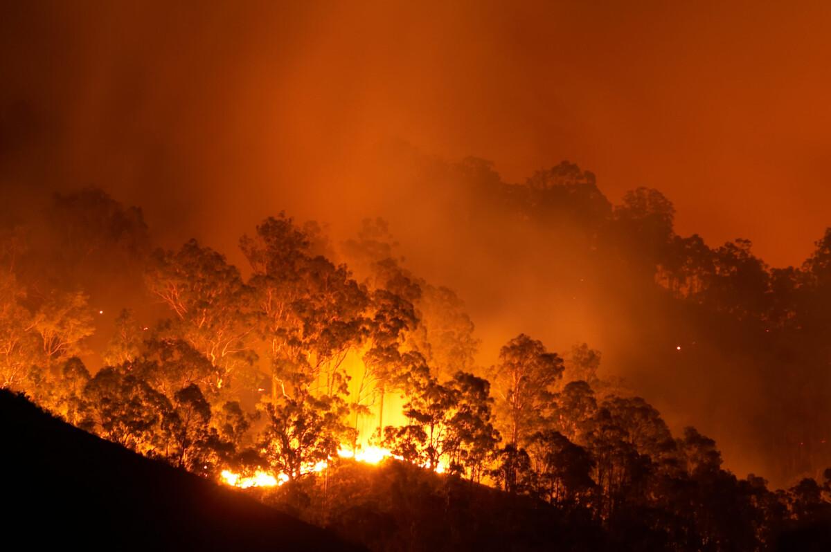 bushfire smoke exposure