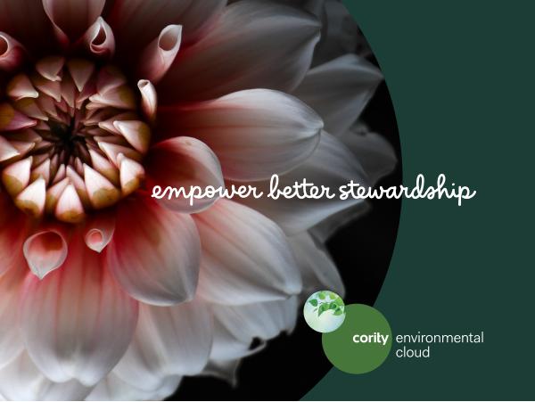 Optimisez la Gestion de vos Déchets avec la Transformation Digitale